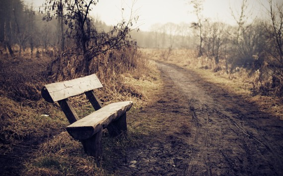 lonely_bench_w1